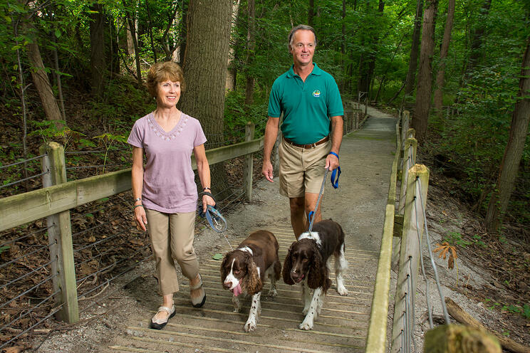 Couple Walking With Dogs